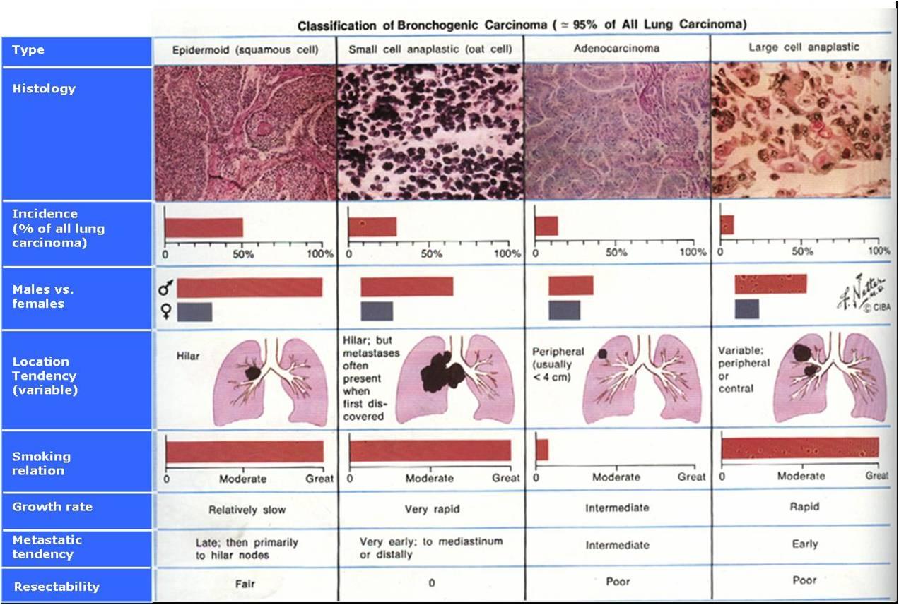 askep anak tb paru.pdf
